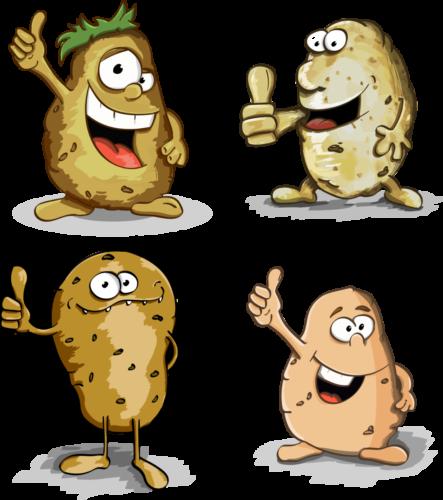 potato-3098852